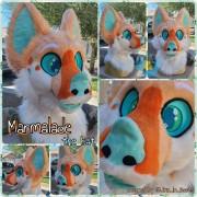 Marmalade-head