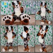 bandit-full