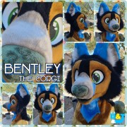 bentley-head