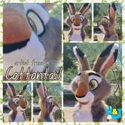 cottontailhead