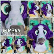 dipper-head