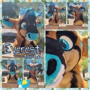 everesthead