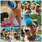 hikarihead