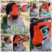 noogs-head