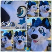 suka-head